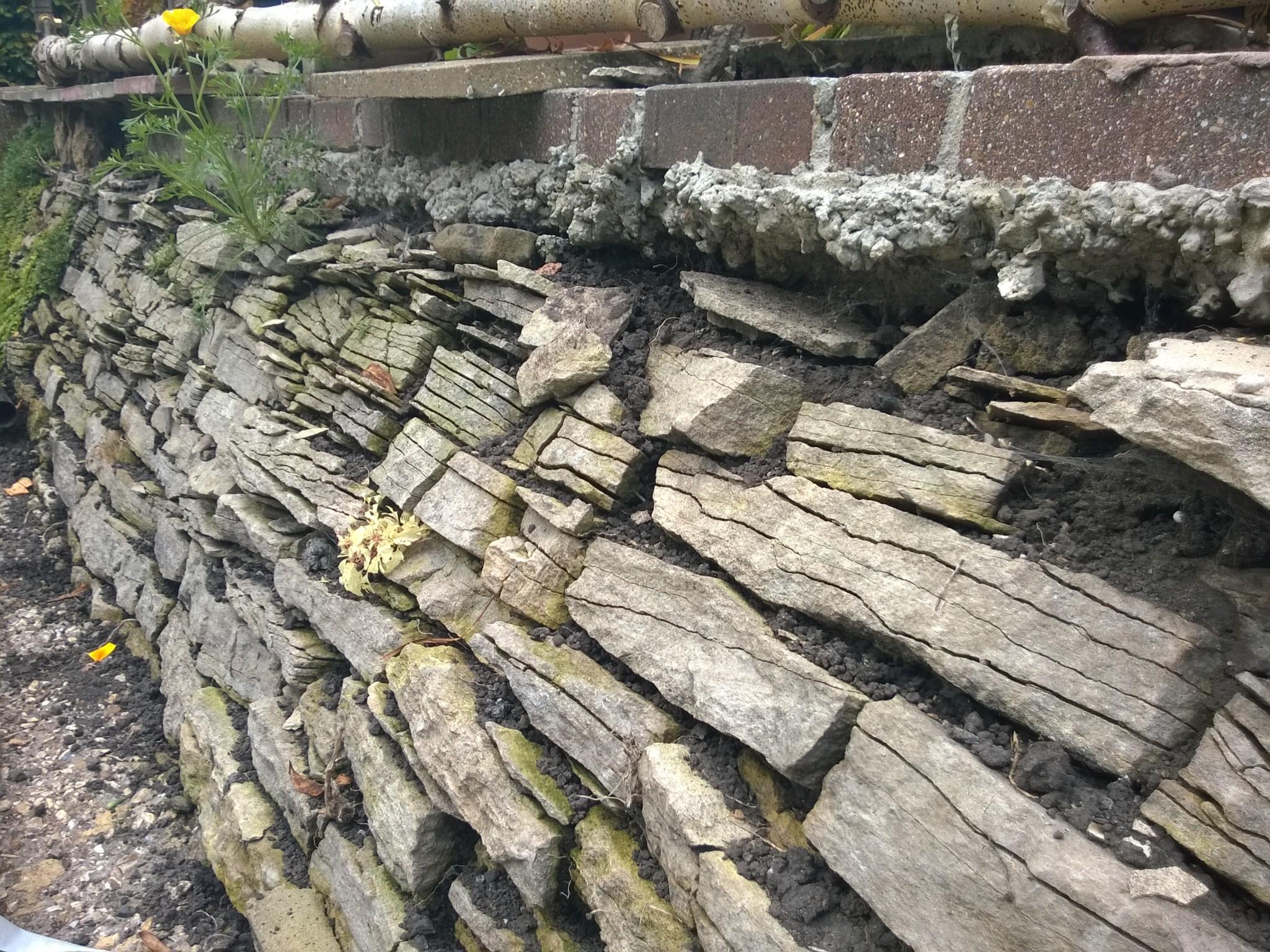 Patio Wall Close-up
