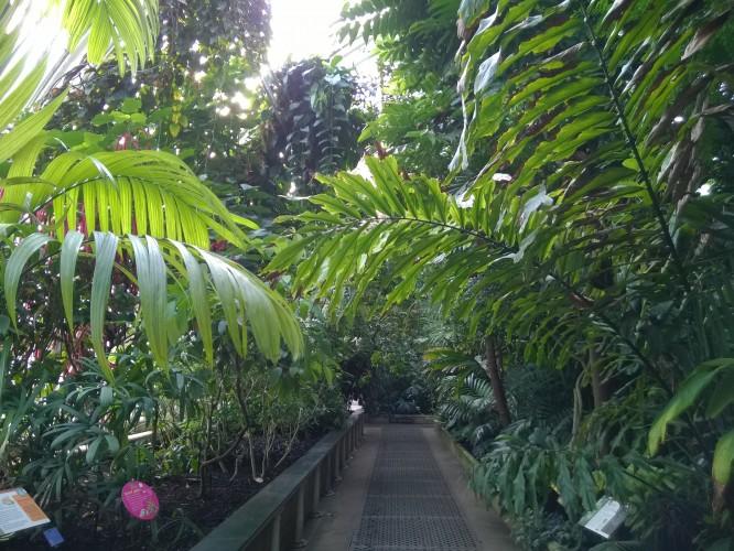 Cue Kew Palm House